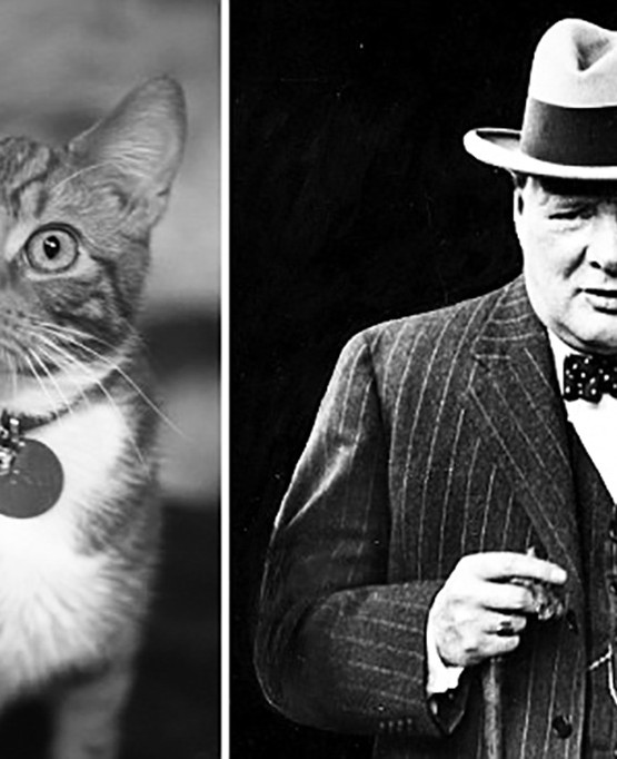 07 Jack_Winston Churchill